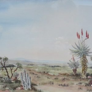 Painting of Karoo landscape with aloe