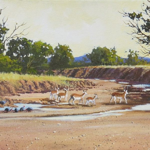 Painting of landscape with dry river and springbucks